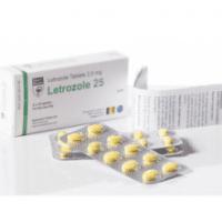 LETROZOLE 25 Hilma Biocare 30 Tabletten (2.5mg/tab)