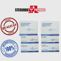 Massengewinn Pack – Testosteron Enanthate (Euro Pharmacies)