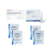 Trockener Muskelpack (Injektion) – SUSTANON + PRIMOBOLAN + PCT (8 Wochen) Euro Pharmacies